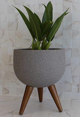 Vaso de plantas com pés